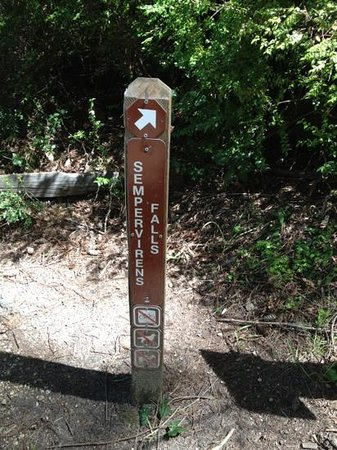 Boulder Creek, CA: direction markers that are hard to spot