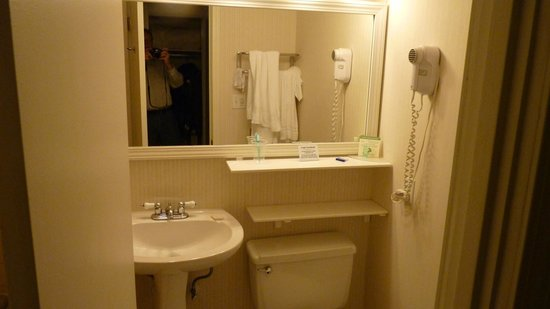 BEST WESTERN at O&#39;Hare: Badezimmer