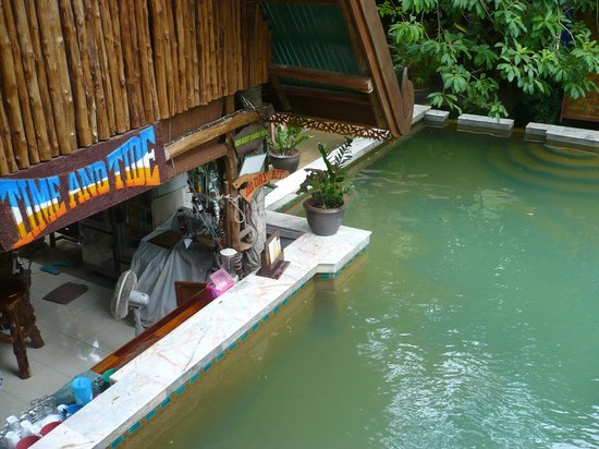 Tropical Garden Bungalows: piscine et bar