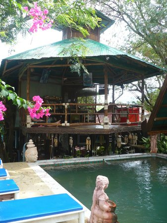 Tropical Garden Bungalows: piscine et coin lecture