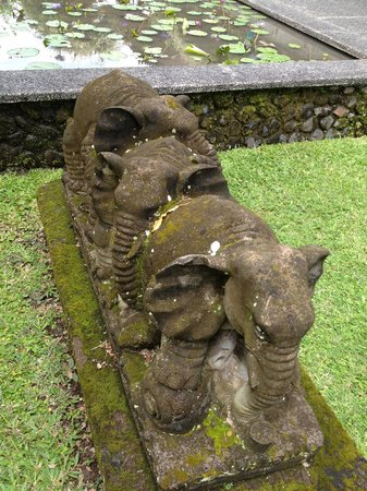 The Chedi Club Tanah Gajah a GHM Hotel: elephants
