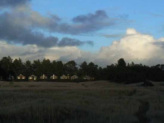 Klipsan Beach Cottages: The cabins as seen from the beach.