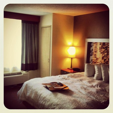 Hampton Inn Manhattan Chelsea: Habitacion 604