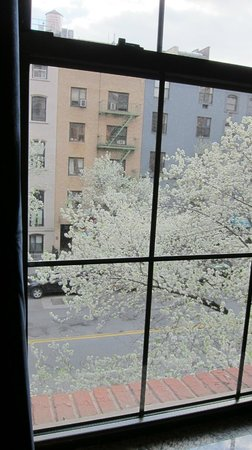 Chelsea Pines Inn: A Taste of Spring on 14th Street