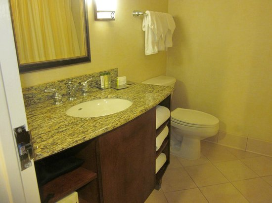 DoubleTree by Hilton - Washington DC - Crystal City: Bathroom