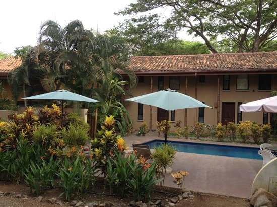 Tamarindo Yam: pool &amp; grounds