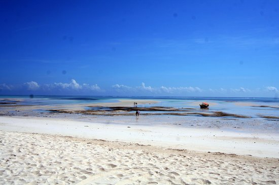 Pongwe Beach Hotel: Ocean at low tide