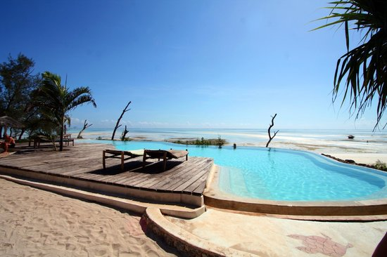 Pongwe Beach Hotel : Infinity pool overlooking the beach