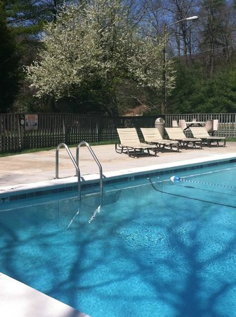Alpen Acres Motel: Take a relaxing dip in our heated outdoor pool surrounded by beautiful mountain scenery