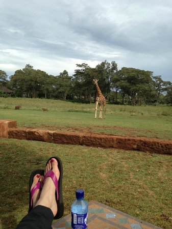 Giraffe Manor: Relax with a view
