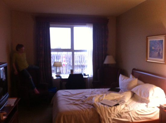 Hotel Chateau Laurier: What a comfortable room with a great view