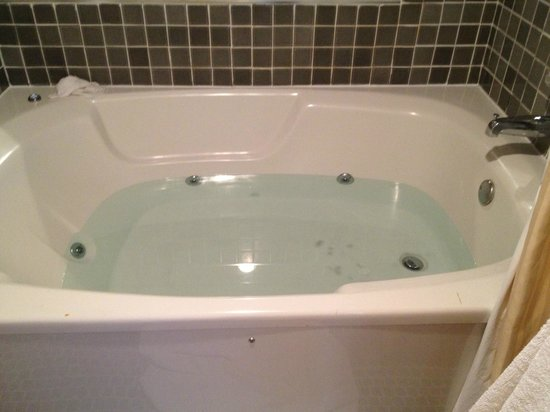 Four Sails Resort: The double jacuzzi tub.  Remember to conserve water.
