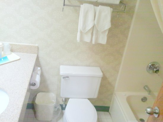 Comfort Inn Circleville: Bathroom