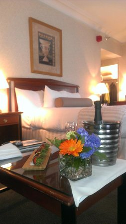 Hilton Cincinnati Netherland Plaza: King Bed Junior Suite