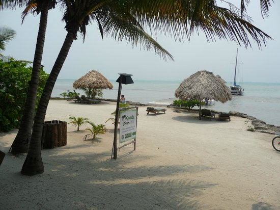 Xanadu Island Resort Belize: View of the beach and dock from near the pool.