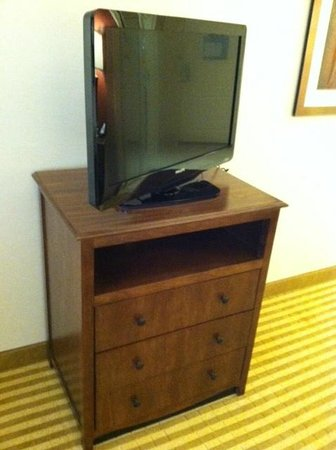 Hampton Inn & Suites Harrisburg North: TV