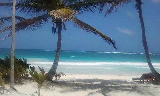 Ixchel Playa & Cabanas: View from beach chair