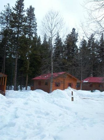 Baker Creek Mountain Resort: View of the cabins