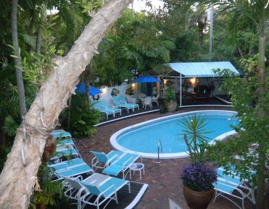 Pineapple Point Guest House and Resort: Relaxing Tropical Paradise By The Pool
