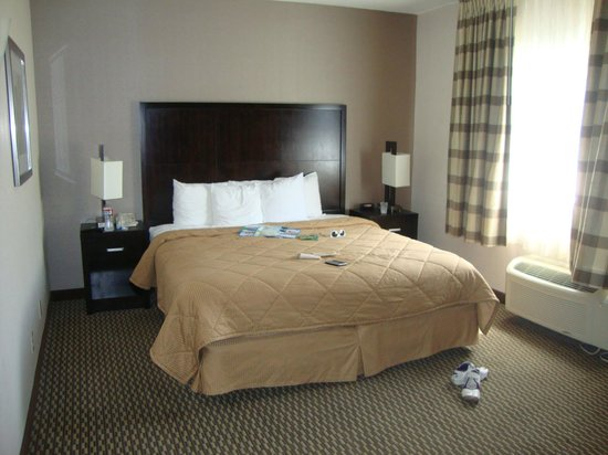 Comfort Inn &amp; Suites Zoo / SeaWorld Area: Habitacion con una cama grande