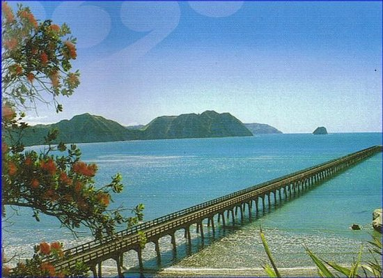 Waihau Bay Photo