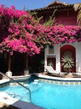 Hotel Colonial: bougainvillea by the pool