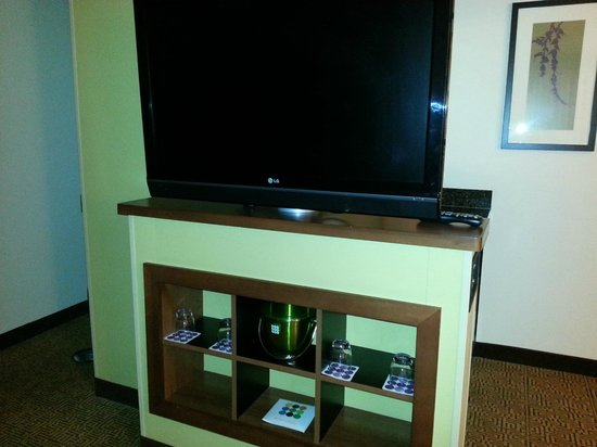 Hyatt Place Milwaukee Airport: Large television.