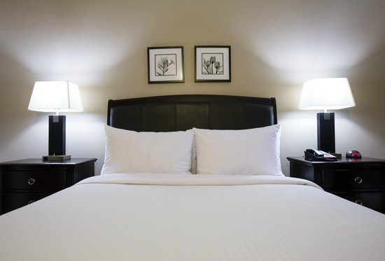 Capital Suites Yellowknife: Experience the best sleep North of 60 with our signature line 'Aurora Bed.'
