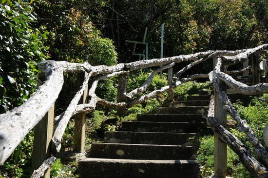 Grotto Bay Beach Resort: Some of those stairs I mentioned....