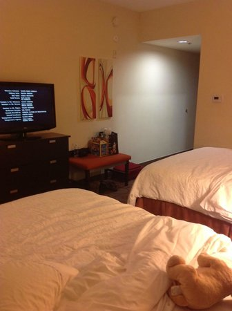 Hampton Inn &amp; Suites Chattanooga / Downtown: Room - Regular Double Bed