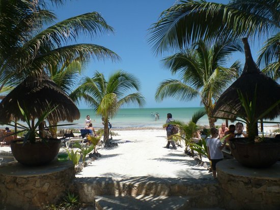 Holbox Dream Hotel : View from hotel 
