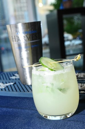 Loews Atlanta Hotel: American Harvest Organic Vodka Cocktail at Loews