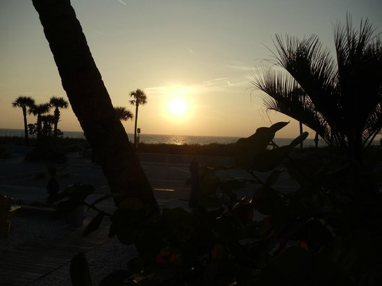 Sabal Palms Inn : Fabulous sunset views