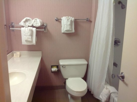 Inn of the Hills Resort &amp; Conference: Nice clean bathroom at Inn of the Hills, Kerrville, TX