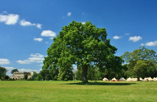 Frampton on Severn, UK: The Park at Frampton Court