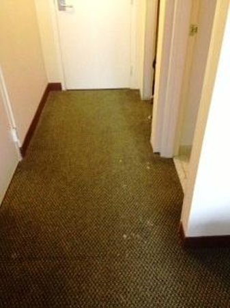 Clarion Hotel Sports Complex: More of my room floor! Dirty!
