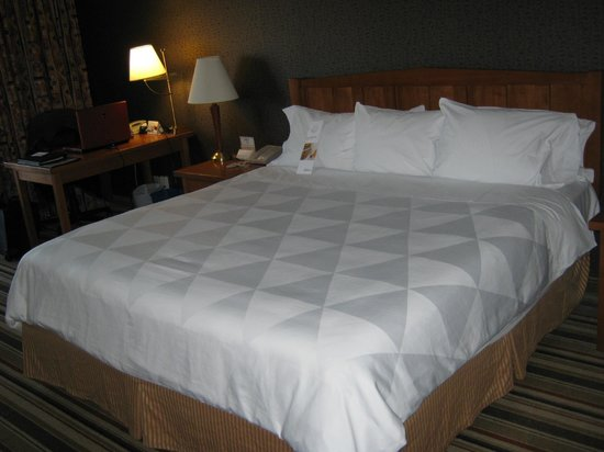 Clarion by Choice Hotel and Conference Centre: bed