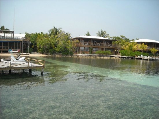 CoCo View Resort: Easy shore diving access, sandy path leads you to the wreck and walls in the front yard.