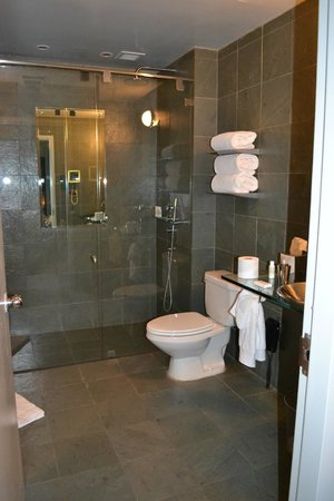 Royalton New York: Bathroom / shower