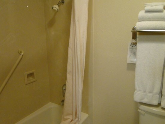 Comfort Inn Flagstaff: Adequate shower area