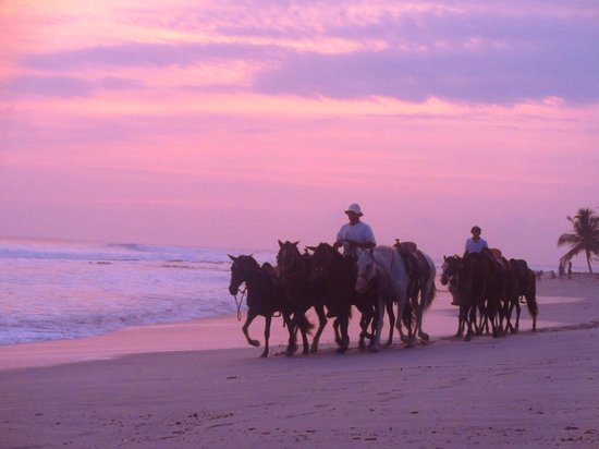 Playa Cielo: sunset and horses, one of the many activities to do in Santa Teresa