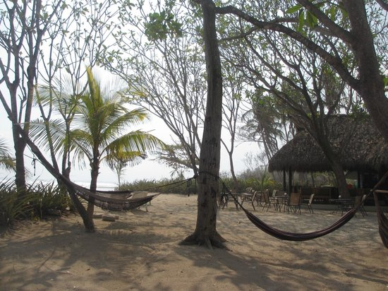 Playa Cielo: hammocks