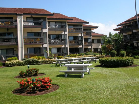 Sea Village Resort: grounds