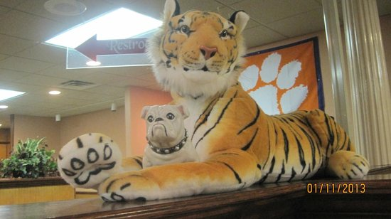 Seneca, SC: Our Tiger & Dog