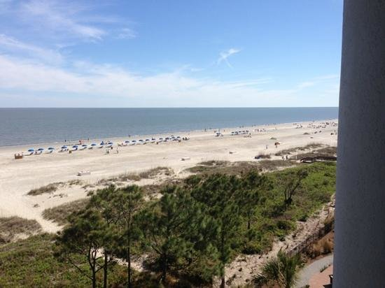 The Westin Hilton Head Island Resort & Spa: Ocean View-Westin Hilton Head...amazing!