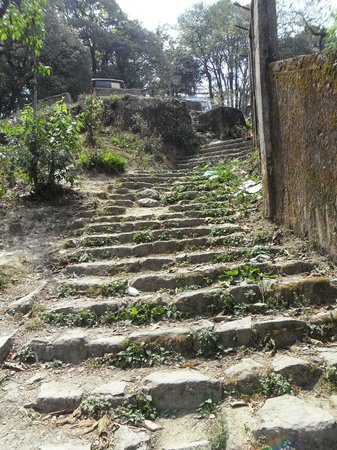 Darjeeling Tourist Lodge: Just before the main gate of the Lodge-way to Mahakal Temple