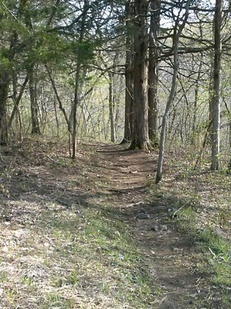 Sullivan, MO: trail picture!!!!!
