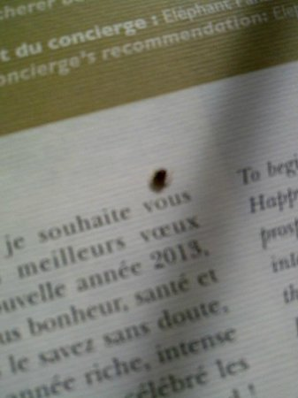 InterContinental Paris Le Grand: Le Grand Bed bugs at Intercontinental Le Grand II
