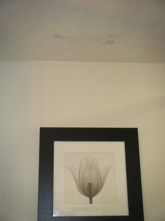 Ellis Hotel: Mold on the ceiling