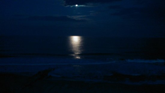 Howard Johnson Oceanfront Plaza Hotel: moonlight from balcony